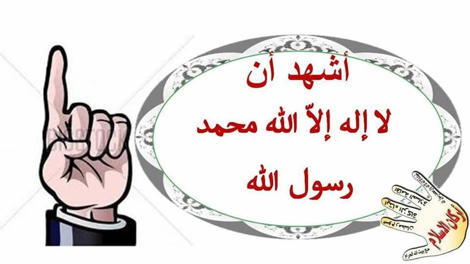 اركان الاسلام - Ourboox