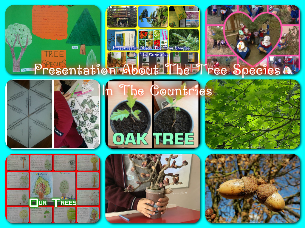 """Artwork from the book - Second Term Activities of Project Partners """"FEBRUARY – MAY 2018"""" by Levent TOROS - Ourboox.com"""