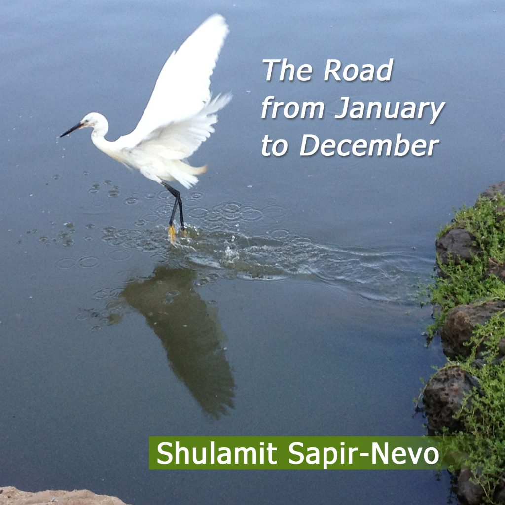 Artwork from the book - The Road from January to December by Shulamit Sapir-Nevo - Illustrated by Shulamit Sapir-Nevo - Ourboox.com