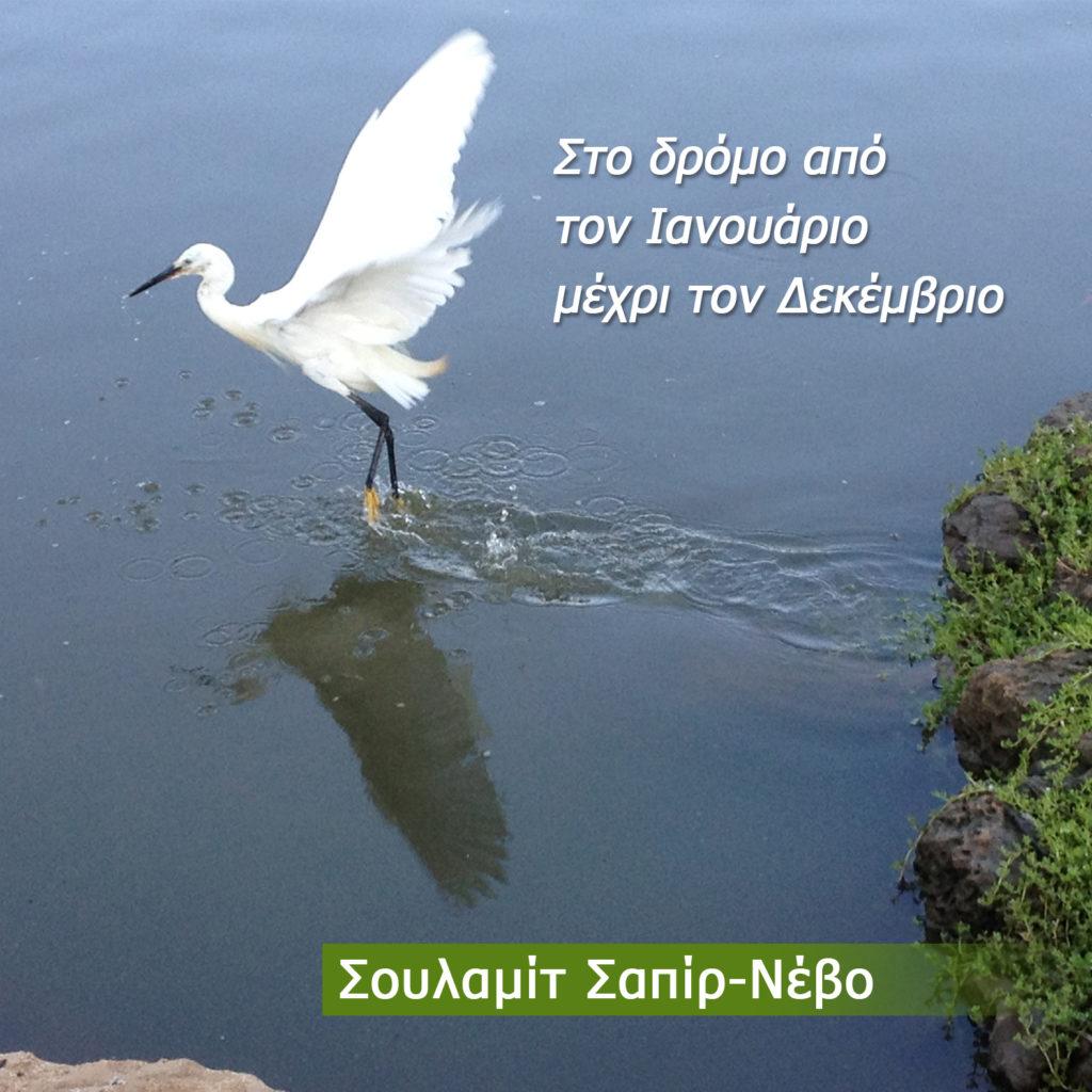 Στο δρόμο από τον Ιανουάριο μέχρι τον Δεκέμβριο by Shulamit Sapir-Nevo - Illustrated by  Σουλαμίτ Σαπίρ-Νεβό - Ourboox.com