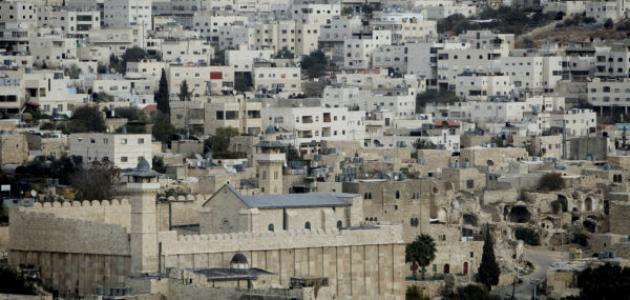 فلسطين by shahd abu kwik - Illustrated by Shahd Abu Kwik  - Ourboox.com