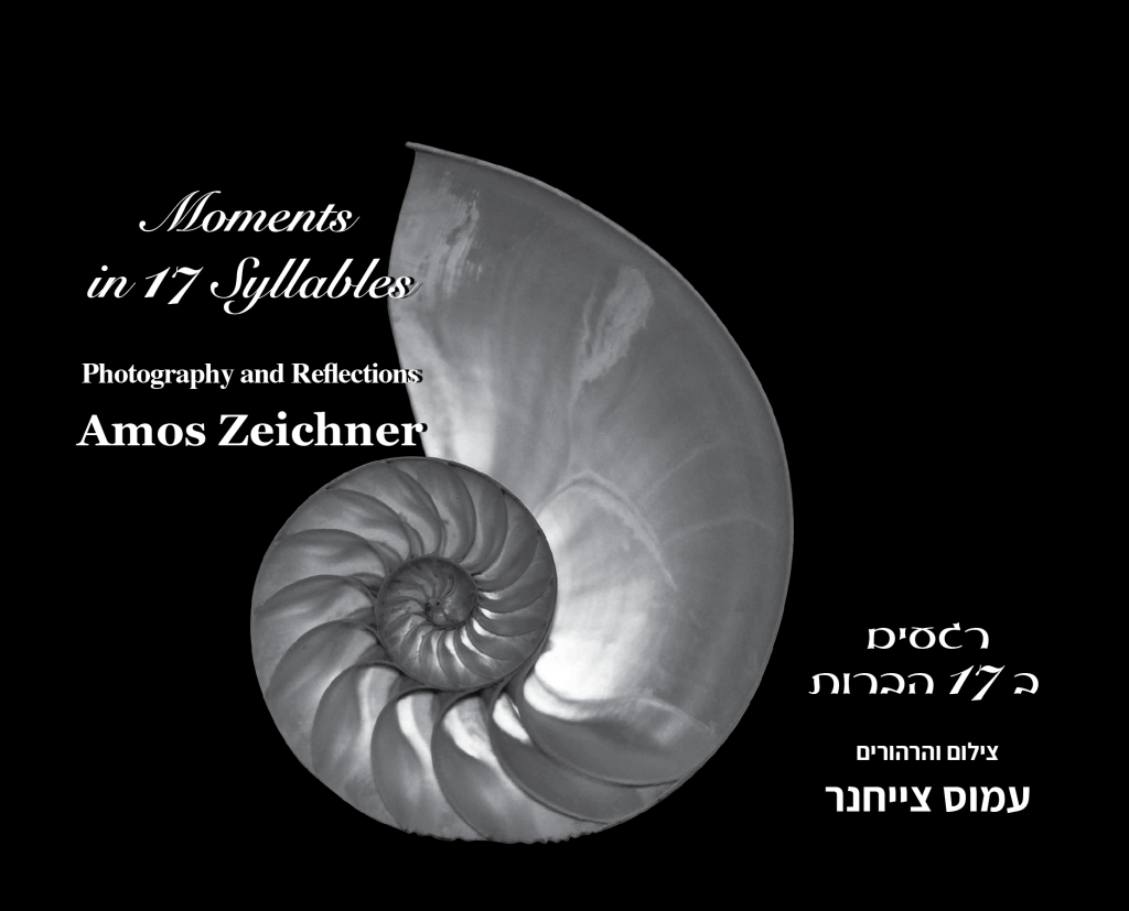 Artwork from the book - Moments in 17 Syllables רגעים ב 17 הברות by Datia Ben Dor - Illustrated by Amos Zeichner - Ourboox.com
