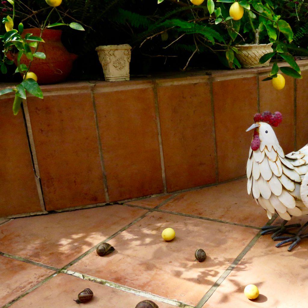 בָּבוּאוֹת by DATIA BEN DOR דתיה בן דור - Illustrated by DATIA BEN DOR - Ourboox.com