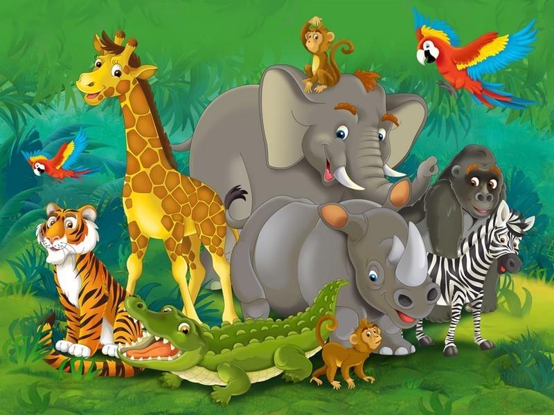 The Animals By: Hadar Nizri by Noam Banot Pisgat Zeev - Illustrated by By: Hadar Nizri - Ourboox.com