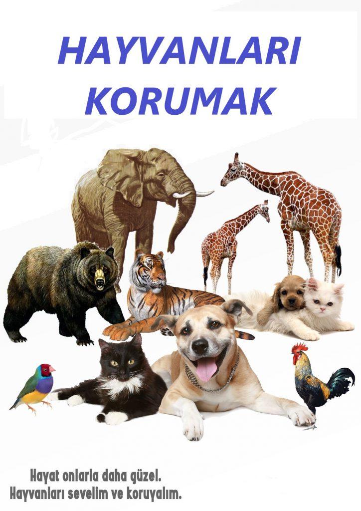 Artwork from the book - Hayvanları Korumak by caliskanari - Illustrated by Defne ÖZKAN - Ourboox.com