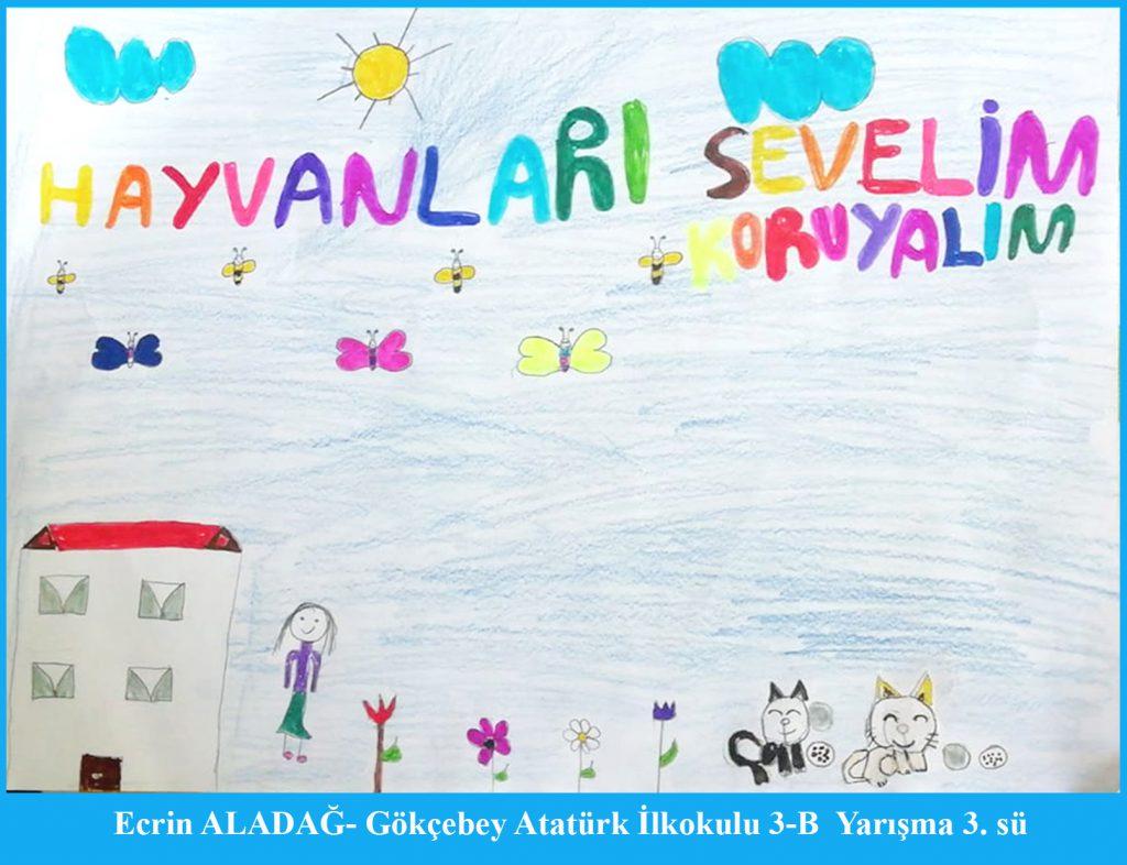 Artwork from the book - AYNI GÖKYÜZÜNÜ PAYLAŞIYORUZ by Mustafa DOĞAN - Ourboox.com