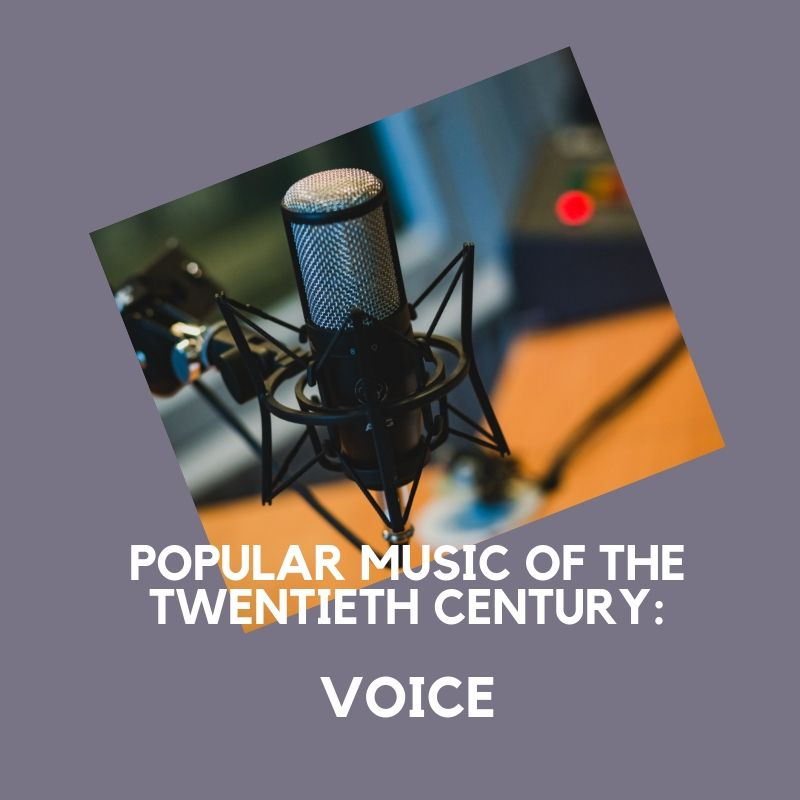 Artwork from the book - Popular Music of the Twentieth Century – Voice by Mel Rosenberg - מל רוזנברג - Ourboox.com