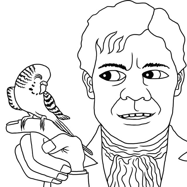 The Budgie by Nick Baker - Illustrated by Sadie Giraud - Ourboox.com
