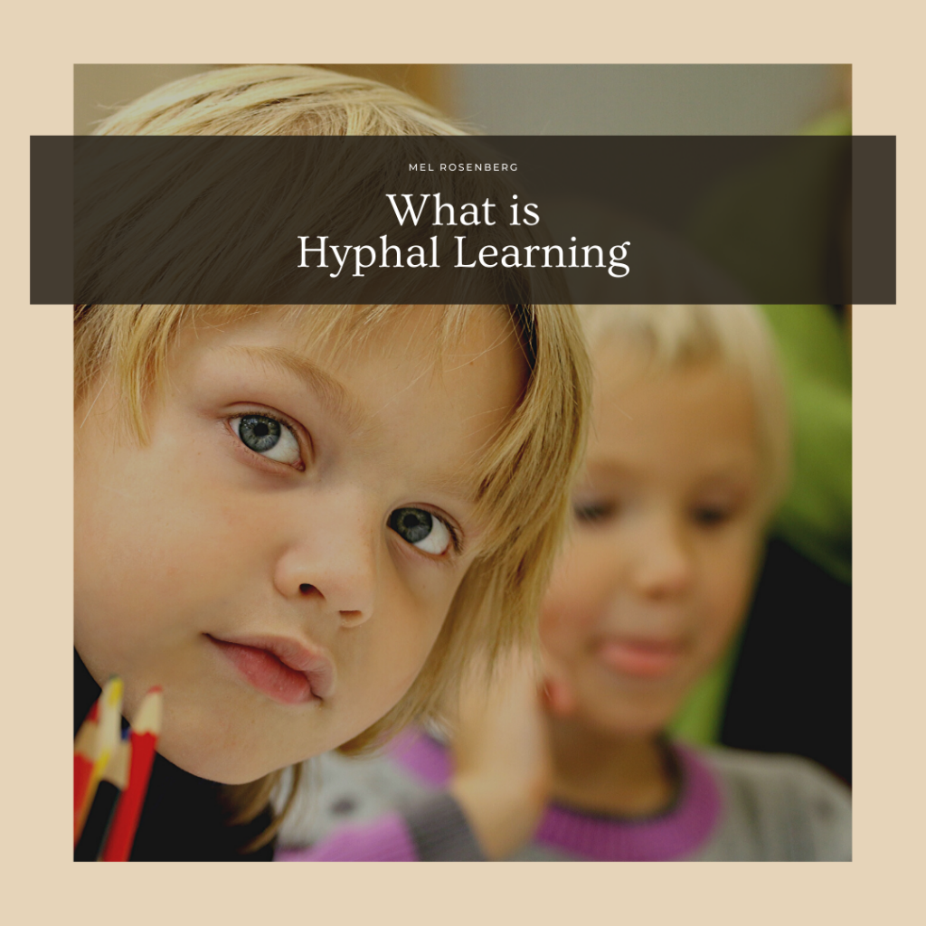 What is Hyphal Learning? by Mel Rosenberg - מל רוזנברג - Ourboox.com
