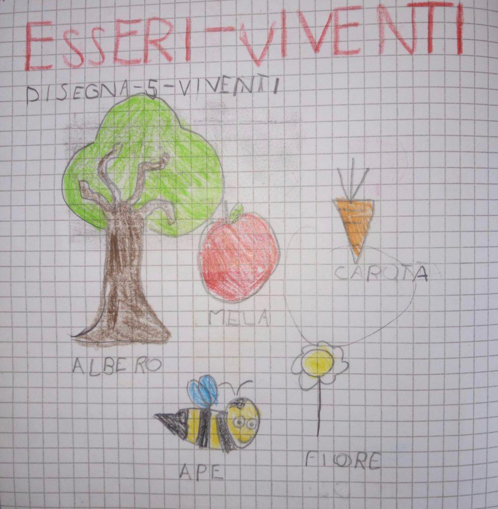 ESSERI VIVENTI by Teresa Paola Aiello - Illustrated by BAMBINI 1^ B - Ourboox.com