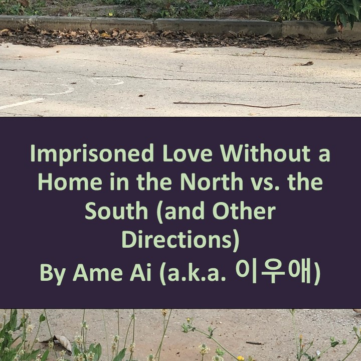 Imprisoned Love Without a Home in the North vs. the South (and Other Directions) by Yi Woo Ae, the Krazean Poet - Illustrated by Mel Rosenburg - Ourboox.com