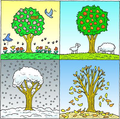 Seasons by Ruth Kriheli - Ourboox.com