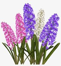 Пролетни цветя by Snezhanka Stefanova - Illustrated by За деца от 3 до 7 години. - Ourboox.com