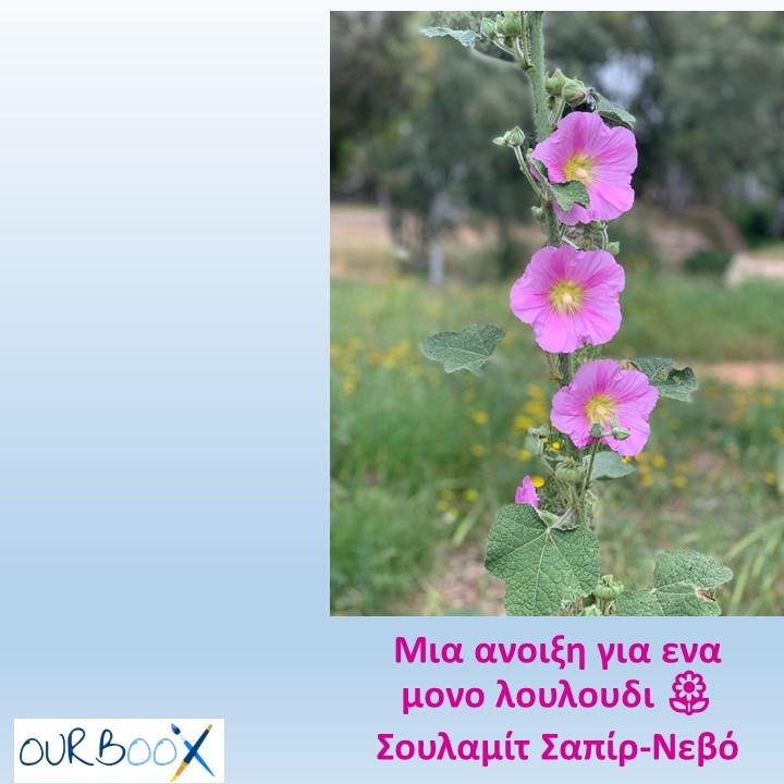 Μια ανοιξη για ενα μονο λουλουδι🌼 by Shulamit Sapir-Nevo - Illustrated by Σουλαμίτ Σαπίρ-Νεβό - Ourboox.com