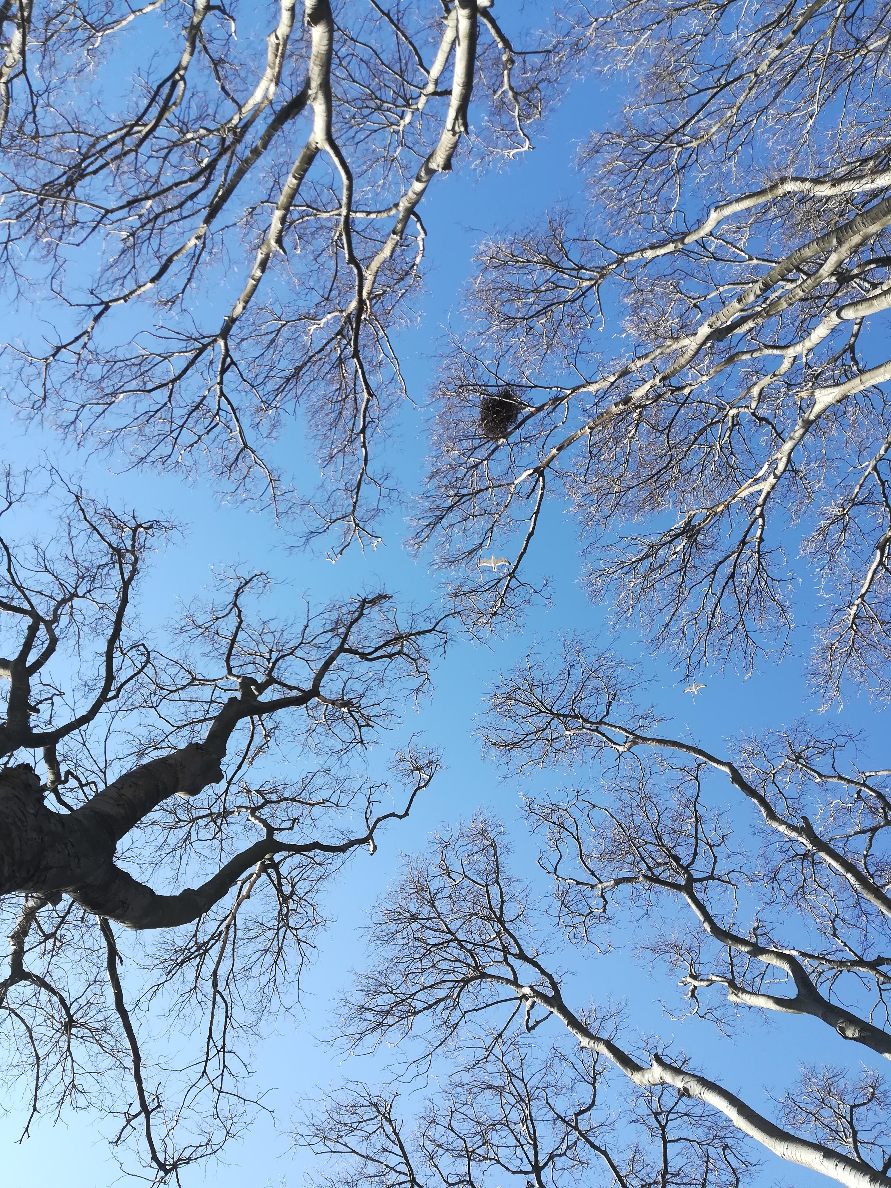 Изолация by Yana - Ourboox.com