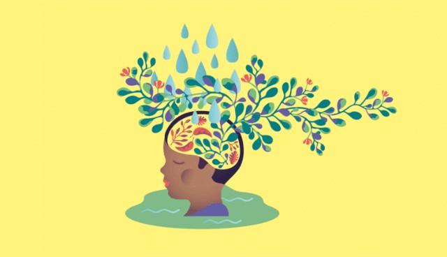 عقلية نمو / عقلية ثابتة