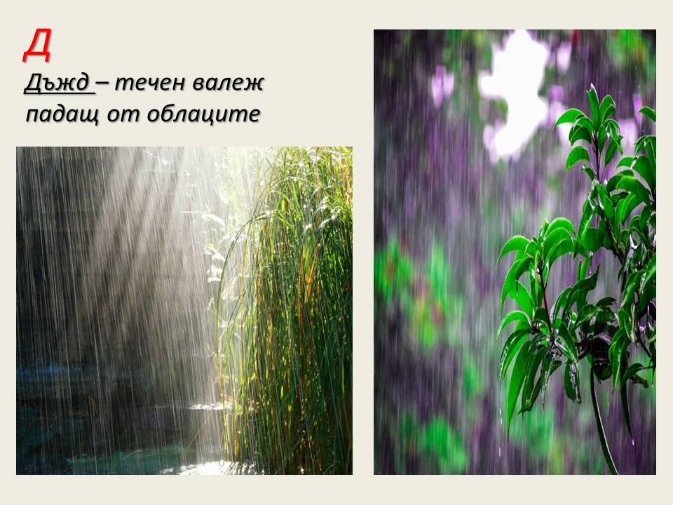 Моят картинен речник по Човек и общество/География/ by Neli Boyadzieva - Illustrated by Нели Бояджиева - Ourboox.com