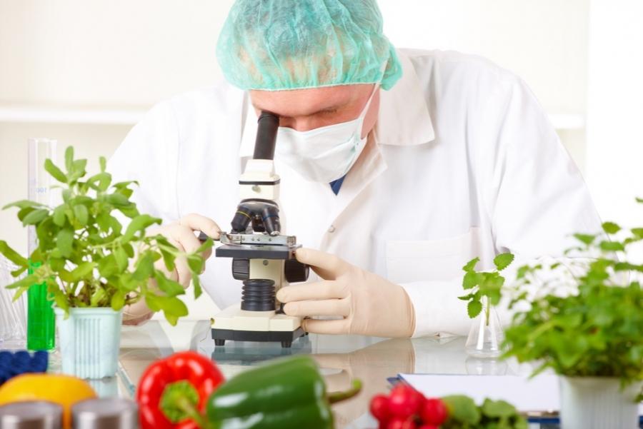 Методи визначення якості харчових продуктів. by Канівець Наталя Віталіївна - Illustrated by Методи визначення якості харчових продуктів - Ourboox.com