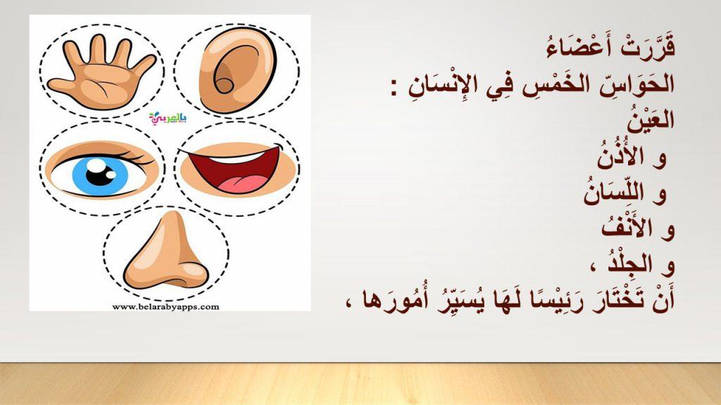 الحواس الخمس by fatma - Illustrated by فاطمه مصري - Ourboox.com