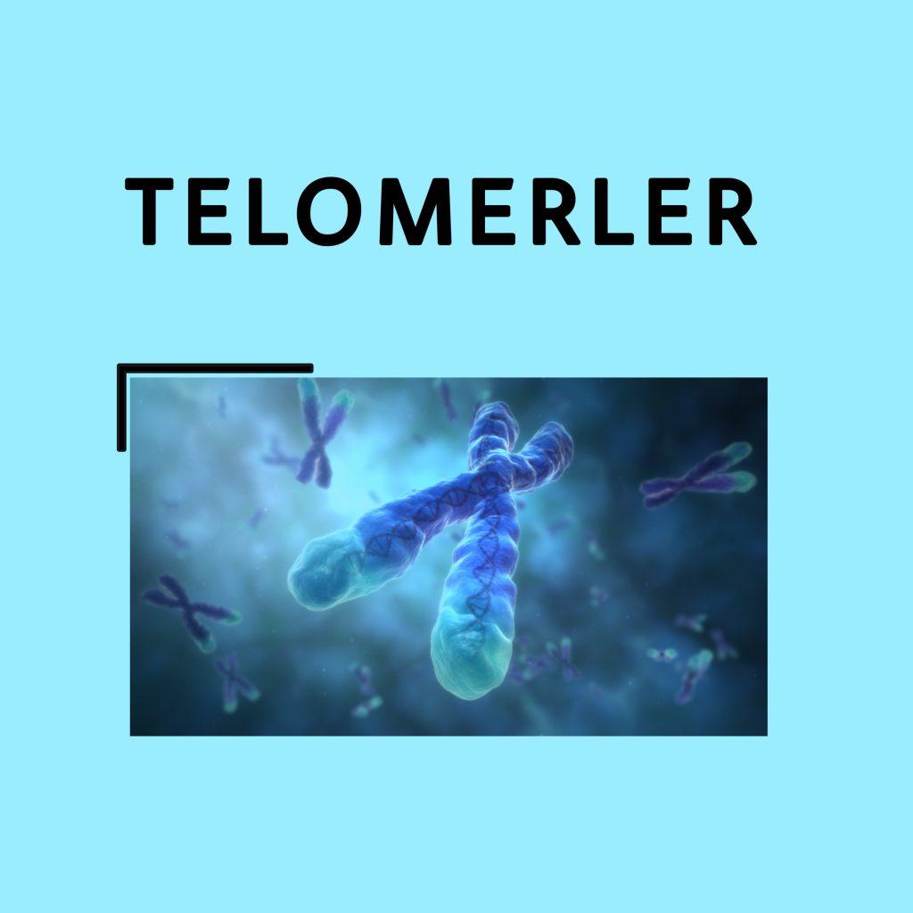 Telomerler ve Kanser