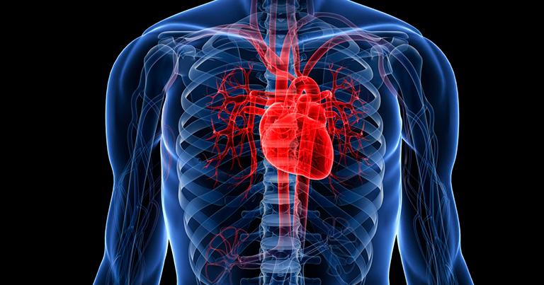 Серцево-судинні захворювання by Kateryna Vasylenko - Ourboox.com