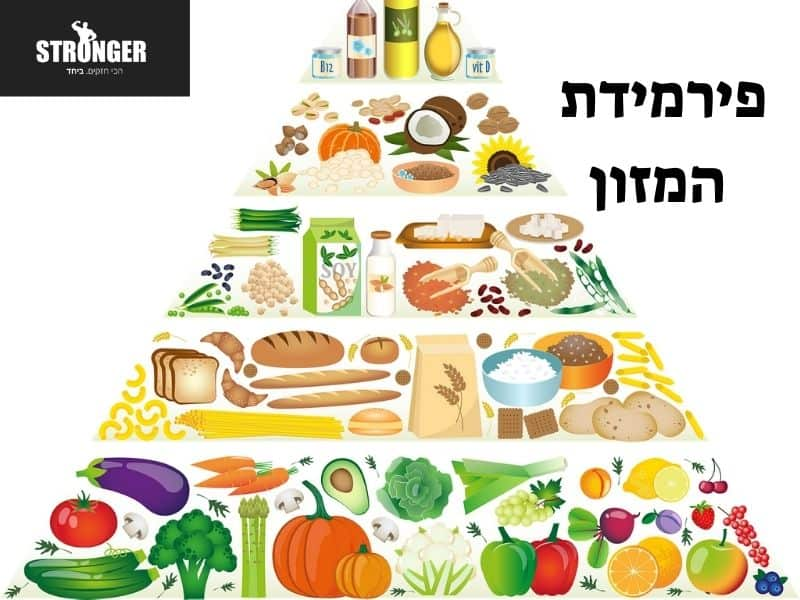 main food groups אבות המזון by lital - Illustrated by                                                             Lital Alush - Ourboox.com