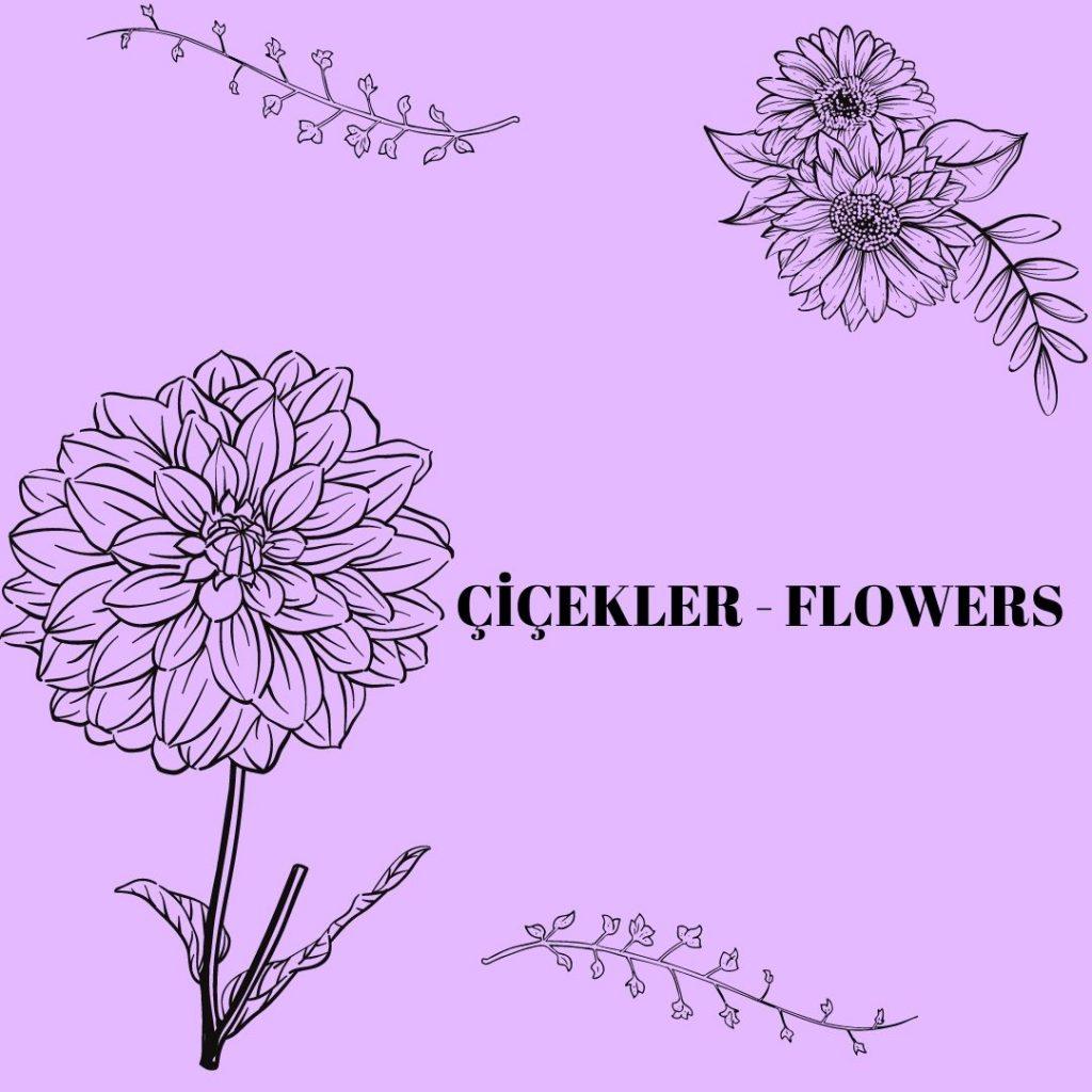 DÜNYANIN SÜSLERİ ÇİÇEKLERİ ÖĞRENELİM WORLD ORNAMENT LET'S LEARN THE FLOWERS by sukran  - Illustrated by Şükran Yenigelen - Ourboox.com