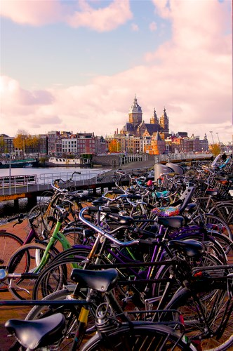 Five things you need to know about Amsterdam by Layla no - Illustrated by Neta & Agam - Ourboox.com