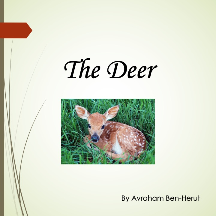The Deer by Stephen Pohlmann - Ourboox.com