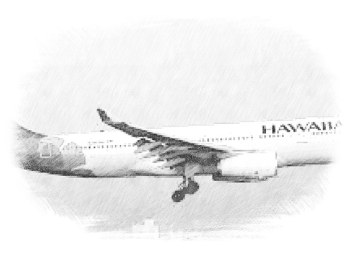 Hawaii travel by Nikol Georgieva - Illustrated by  by Nikol and Martin from Bulgaria and Sebastian from Romania  - Ourboox.com