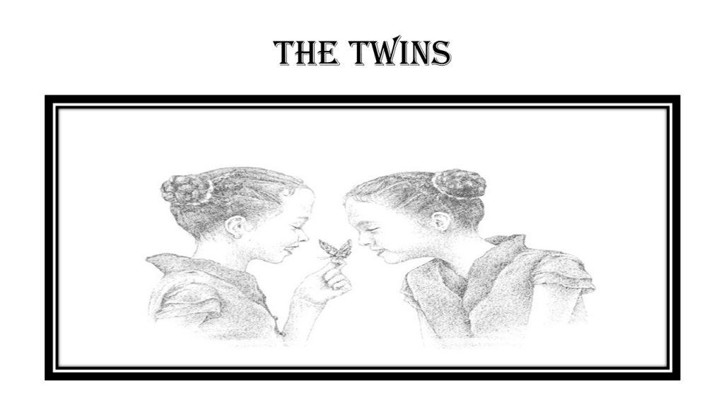 The twins by Lachezara - Illustrated by Mrs. Stefka Stoyanova,Lachezara,Vanessa,Maya - Ourboox.com