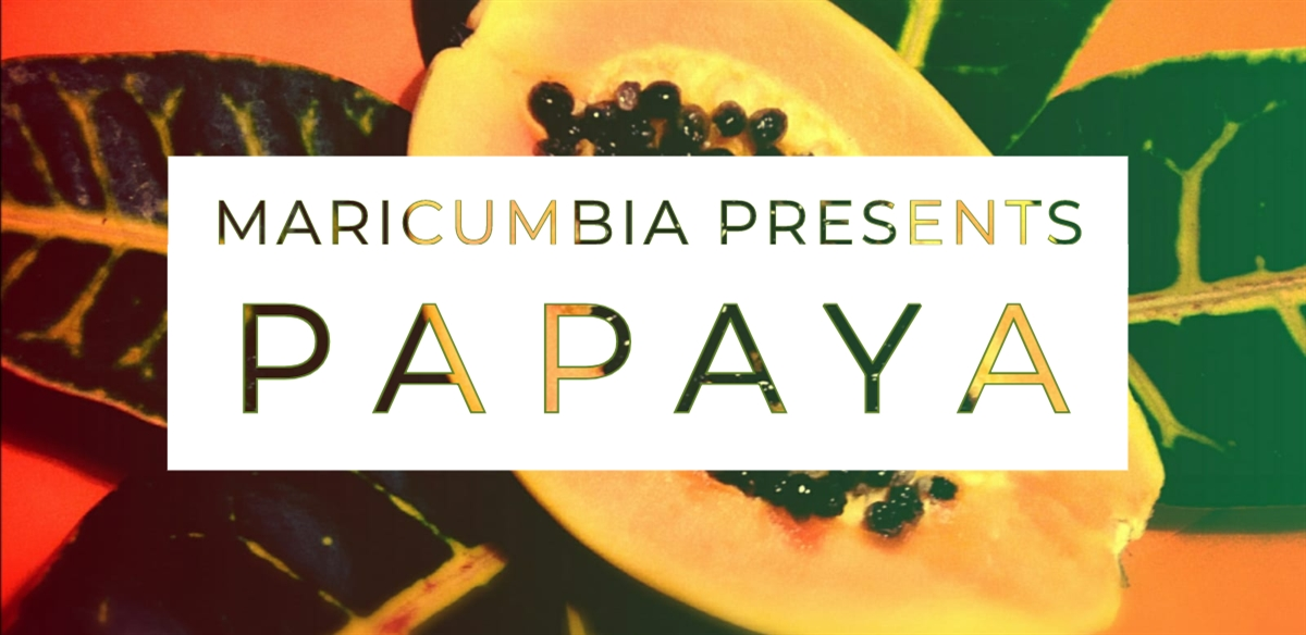 MARICUMBIA PRESENTS: PAPAYA tickets