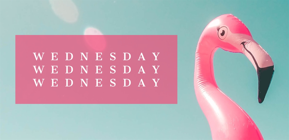 Wednesday Wednesday Wednesday tickets
