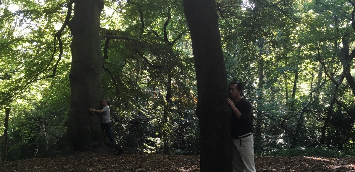 LGBTQ+ Forest Bathing in London tickets