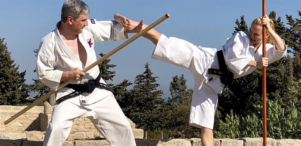Guest Instructor -  Martial Arts tickets