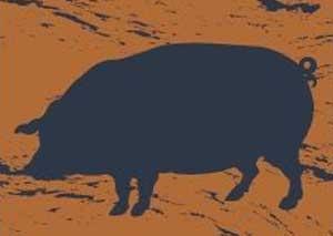 The Square Pig  logo