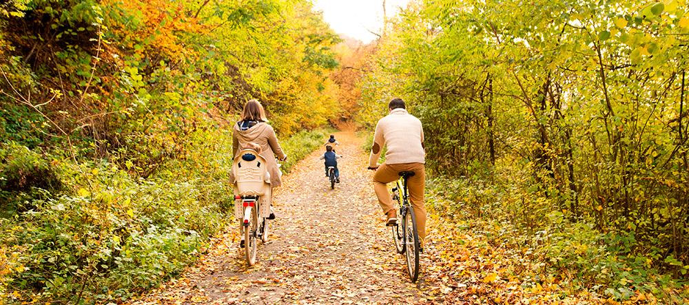 bici-familia