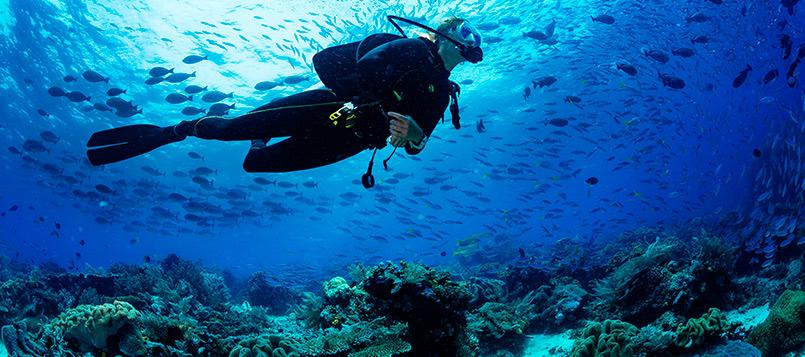 girona-submarinismo