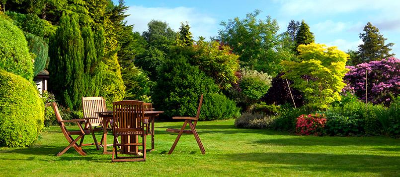 cuidar-jardin-verano