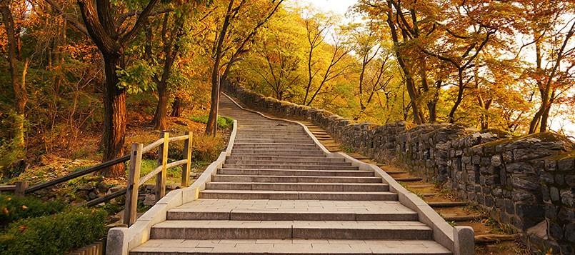 adaptarse-a-la-falta-de-luz-en-otoño-con-cambios