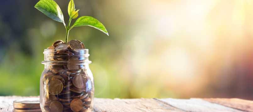 Respeta el ambiente convirtiendo tu hogar más ecológico