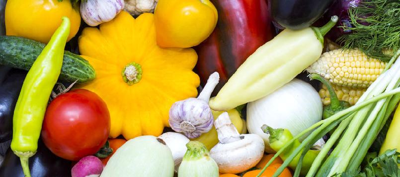 primeras verduras de la temporada