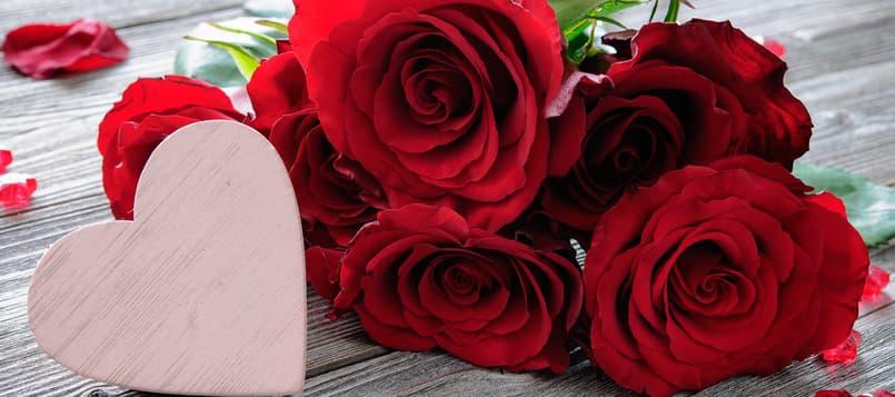 Las-flores-y-su-significado-3