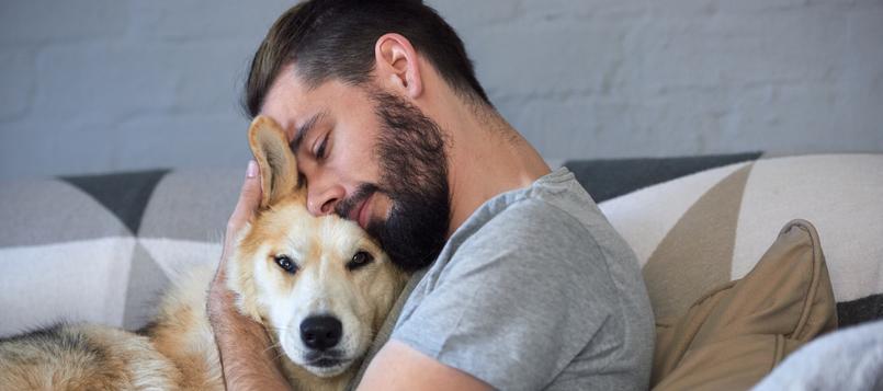 pasos-para-adoptar-un-perro-2