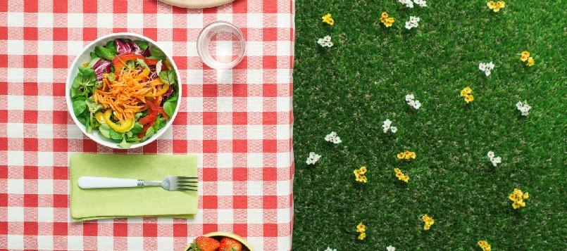 plantos-sencillos-si-vas-de-picnic-2