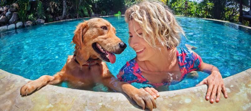 planes-para-hacer-con-tu-perro-cuando-hace-mucho-calor-1