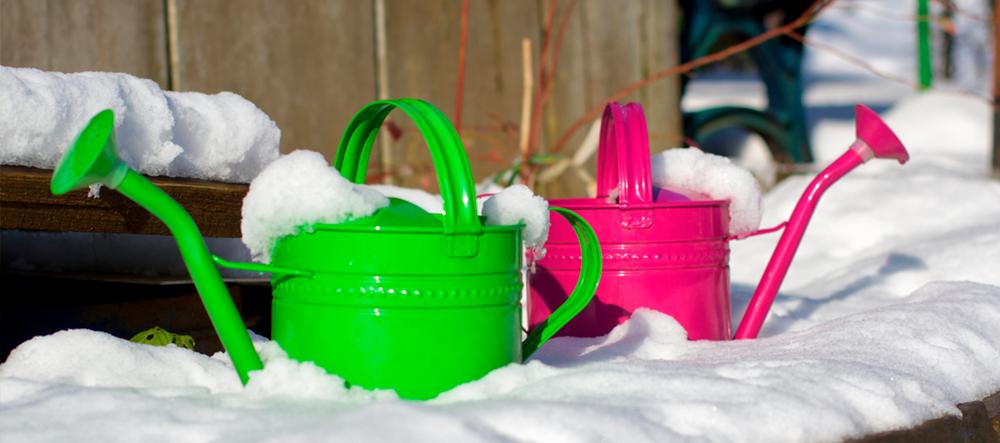 Cómo cuidar el jardín en invierno