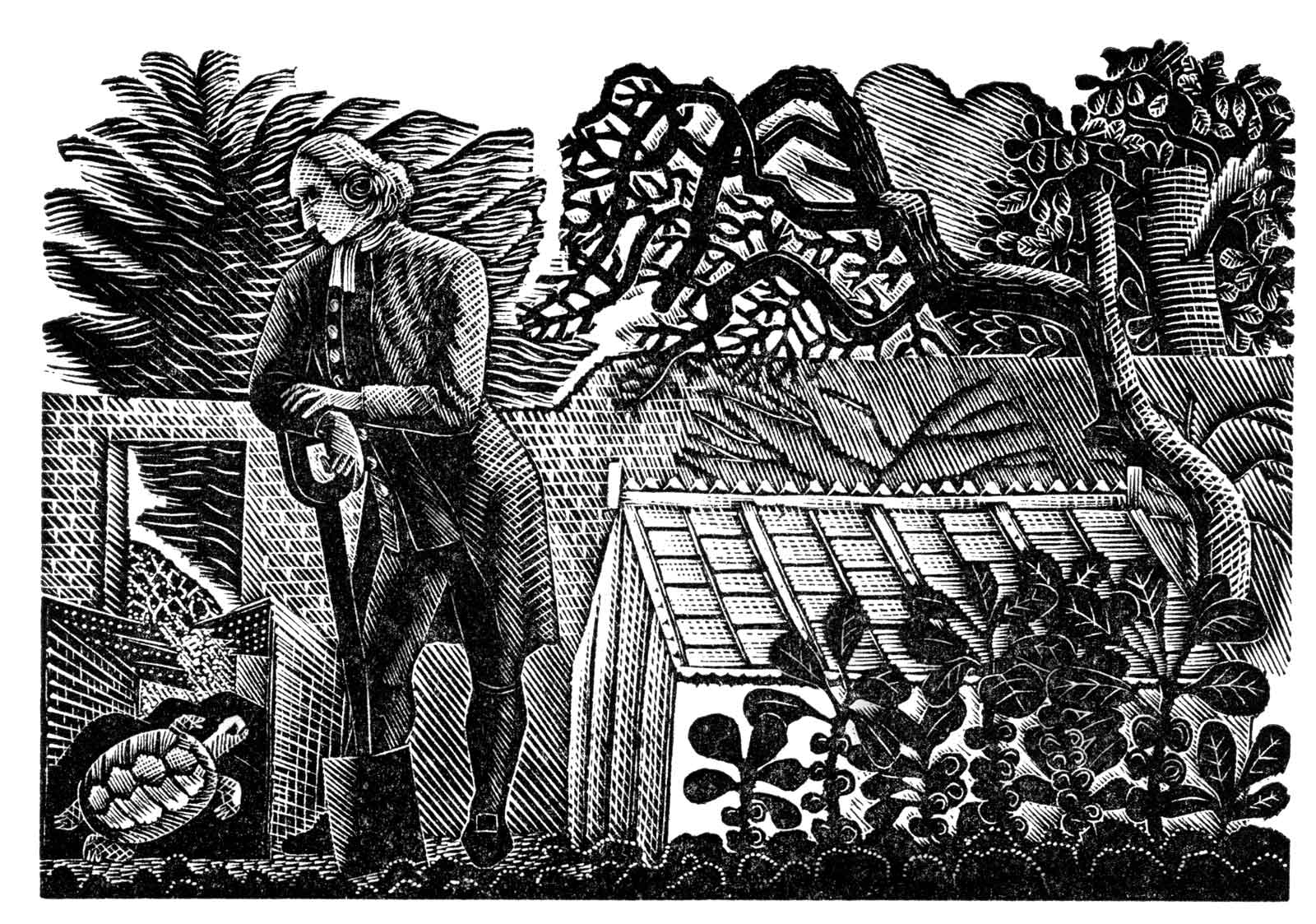 A man in 18th century dress leans on a spade looking down at a tortoise in a garden, with a small greenhouse behind him.