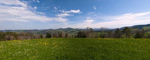 Weid-Hof - Erlebnis Bauernhof