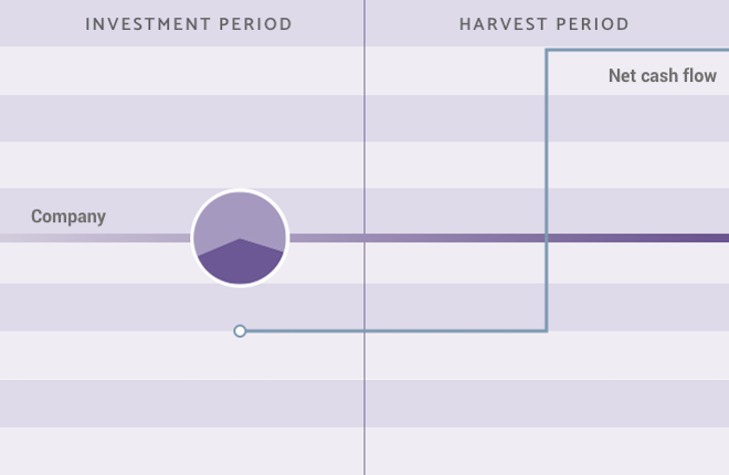 Co-investments Strategy infographic